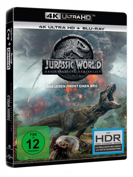 Jurassic World: Das gefallene Königreich (4K Ultra HD)+(Blu-ray 2D)